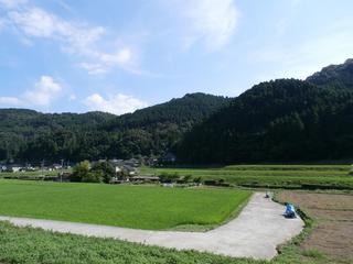日田のおうちの庭で