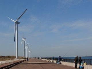 若松エコタウンの風車