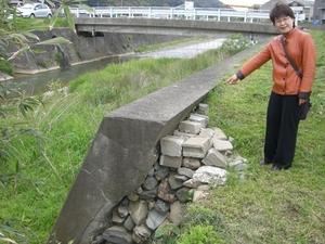 中の橋付近の堤防調査